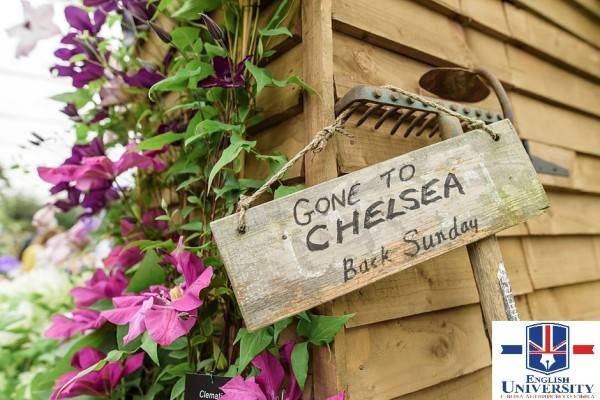 Clematis-and-Closed-Sign-940x627