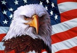 964009__american-eagle_p